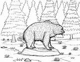 Cave Bear Coloring Spring Robin sketch template