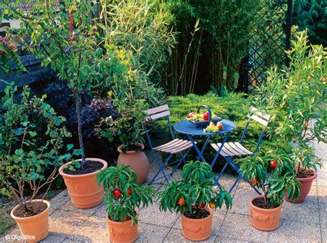 2 en pots c est possible mon jardin ma maison