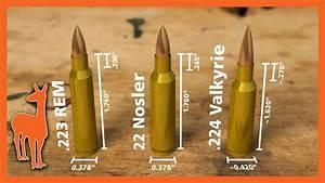 Watch Dimensions Chart 224 Valkyrie Vs 22 Nosler Vs 223 Remington Wild