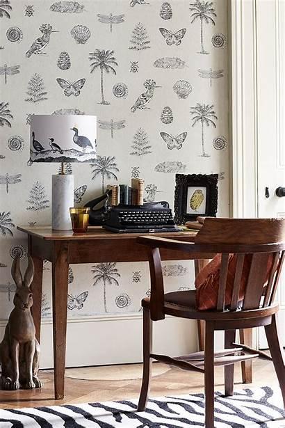 Sanderson Cocos Designer Finestwallpaper Wallpapers Usa Canada