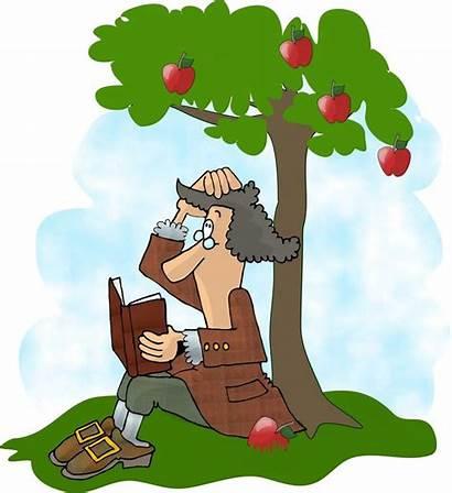 Newton Gravity Law Apple Isaac Story Fell