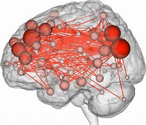 Scientists Can Now Predict Intelligence From Brain