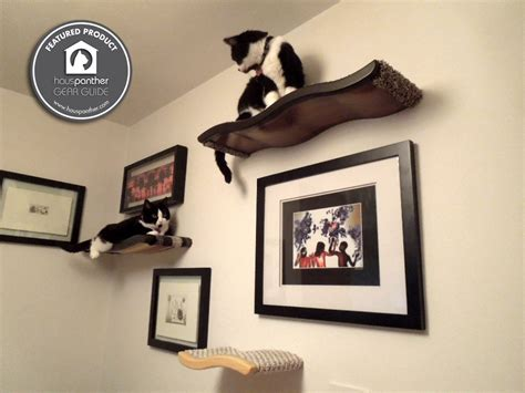 floating cat shelves floating cat shelves 3 perch combo by kascadedesigns on etsy