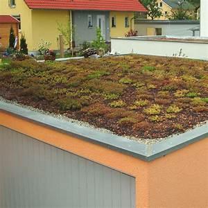 Dach Für Garage : dachbegr nung mit system f r ein rundum nachhaltiges dach ~ Lizthompson.info Haus und Dekorationen