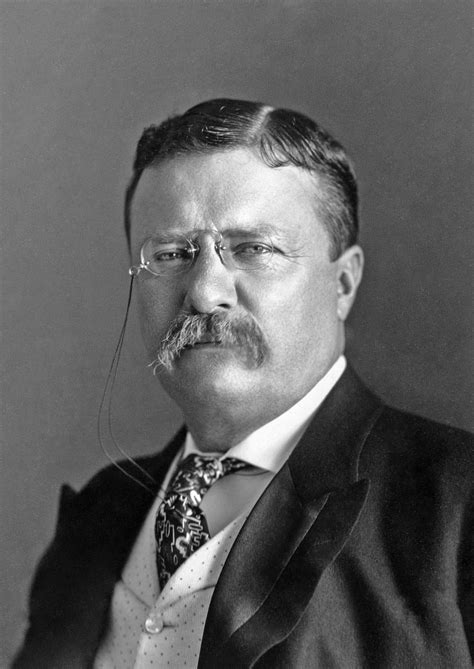 Theodore Roosevelt - Special - The Columbus Dispatch