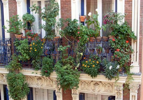 Pflanzen Für Balkon by Bienenfreundliche Pflanzen Fr Den Kleinen Garten Oder Den