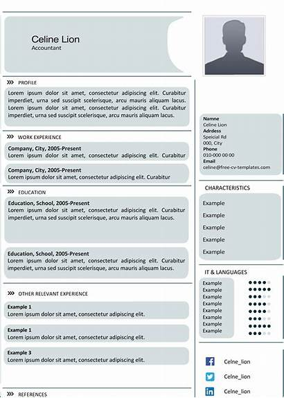 Cv Advanced Templates Template Creative Resume Grey