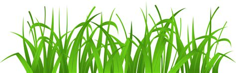 Clipart Grass Grass Clipart Colouring Page Pencil And In Color Grass