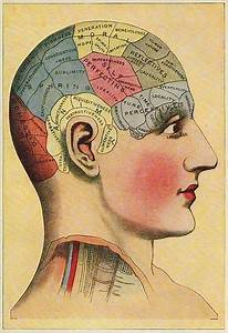 Phrenology Chart   Kinda Want This On My Wall   Old School