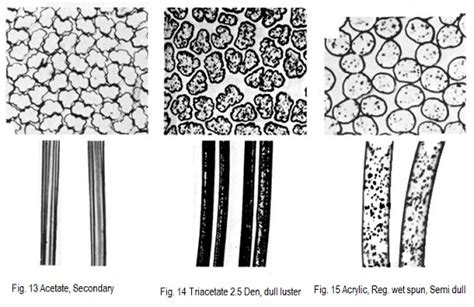 clothing study microscopic view   natural