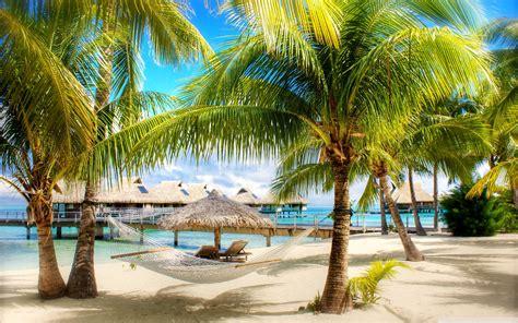 tropical beach resorts full hd image