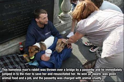 touching   people saving animals faith