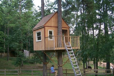 Tree House Plans Two Trees Best Of Fox E Munications-new