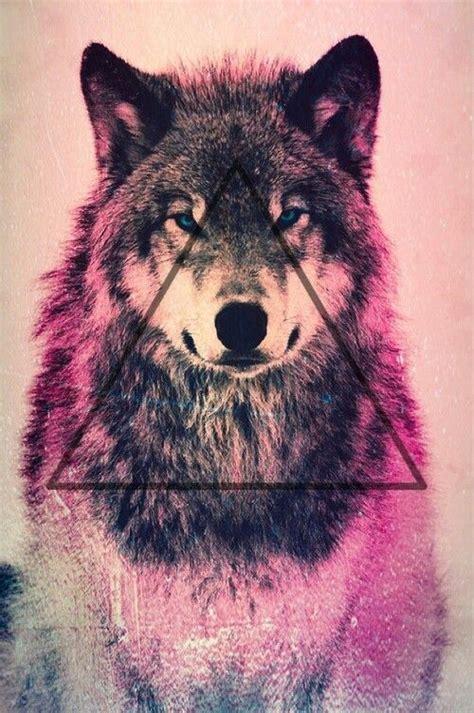 Wolf Wallpaper Kawaii kawaii wolf wallpaper search
