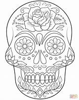 Coloring Skull Sugar Flowers Pages Flower Printable Halloween Mandala Simple Dead Sheets Super Visit Tattoos Animals Crafts sketch template
