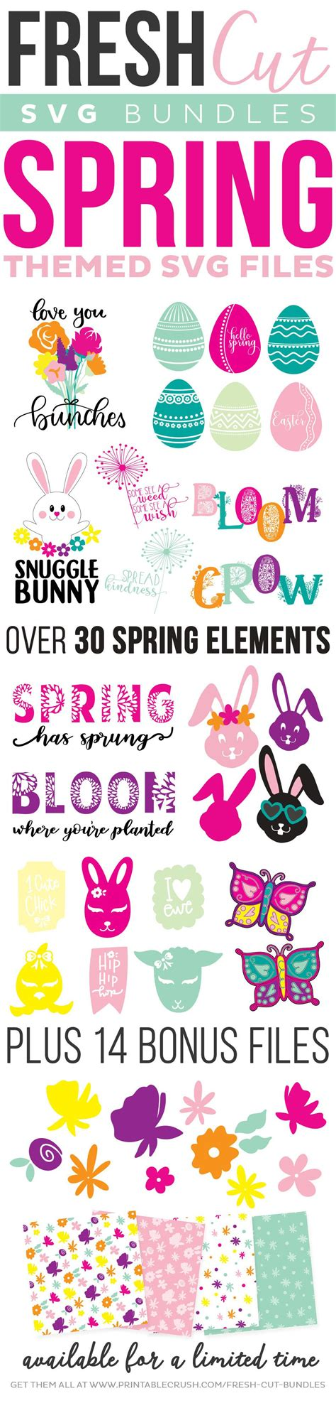 Kids young and old love it! 7 Creative Spring SVG Craft Ideas in 2020 | Cricut, Cricut ...