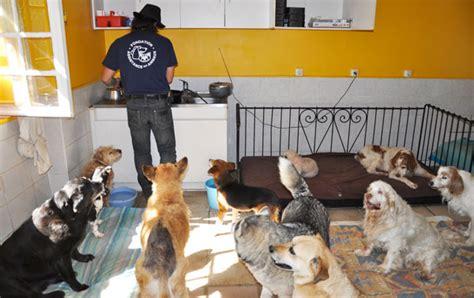 la maison de retraite de la fondation assistance aux animaux dans le gard
