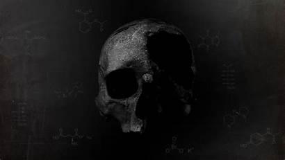 Death Skull Dark Chemistry Wallpapers Desktop Gray
