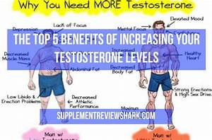 The Top 5 Benefits Of Increasing Your Testosterone Levels I Best Supps