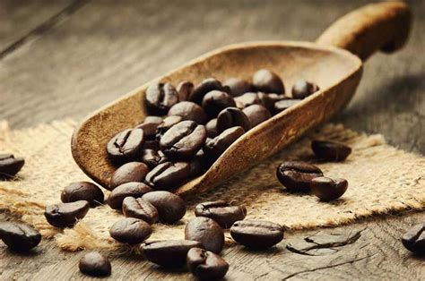 Similarly, if you're a business looking to fuel your workplace with quality coffee beans, we'd love to provide you a solution. Sumatra Lintong Toba - Wholesale Coffee Suppliers | Coffee ...