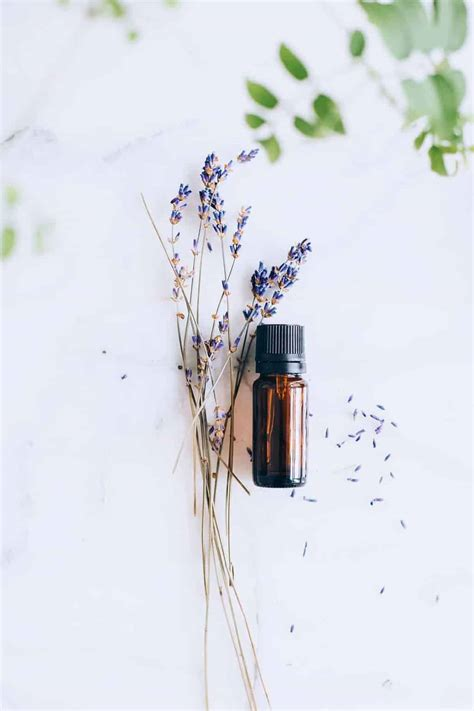 3 Green Cleaning Lavender Oil Uses + Recipes | Hello Glow