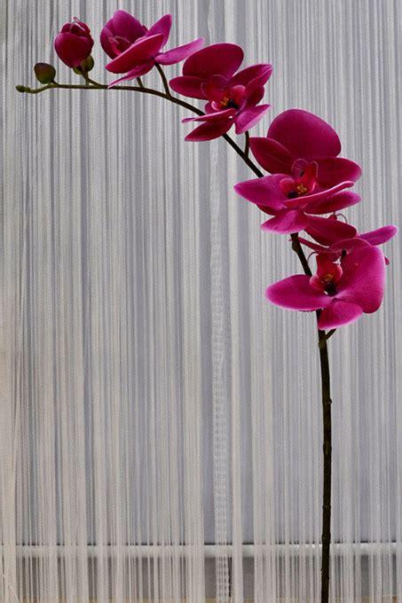 formar  todos os tipos flores artificiais formar  todos