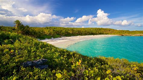 vieques island vacations 2017 package save up to 603 expedia