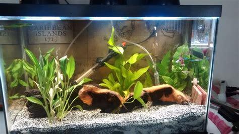 reduce  flow rate   filter  aquarium club