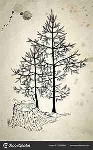 Dibujos  Arboles De Navidad Peque U00f1os