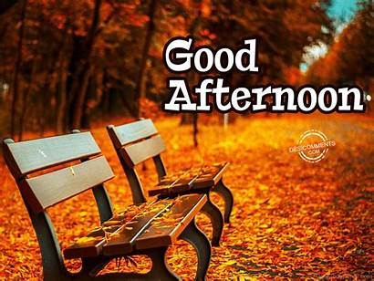 Afternoon Desicomments Goodafternoon Graphics Killer Gurjeevan Malra