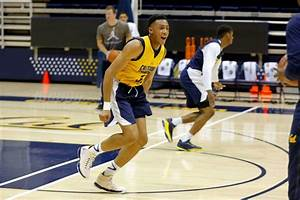 Stephen Domingo finds opportunity with Cal basketball - SFGate