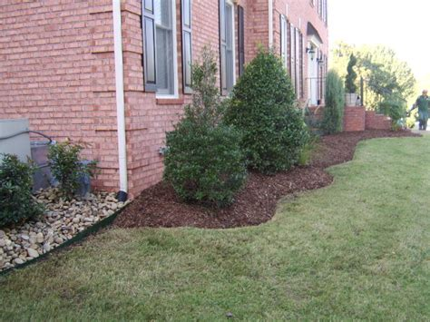 edging options for landscaping landscape edging ideas tufudy