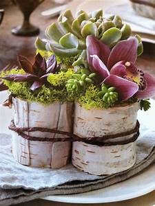 Containers, Covered, With, Birch, Bark, Use, Plastic, Pots, From, Lowes