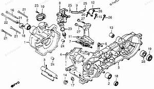 Honda Motorcycle 1982 Oem Parts Diagram For Crankcase