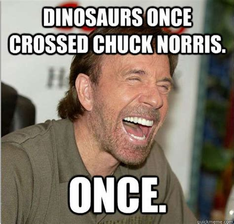 Chuck Norris Birthday Meme - 394 best images about chuck fuckin a norris on pinterest 50 funny and friday humor