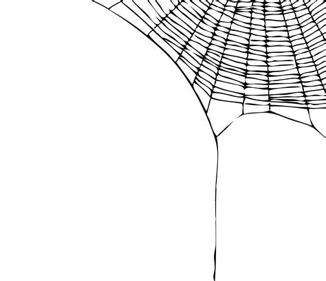 spider web clipart transparent spider web transparent png stickpng
