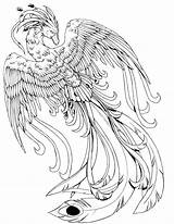 Face Coloring Phoenix Pages Bird Animal Kissy Deviantart Potter Harry Dragon Printable Mythical Adult Drawing Colouring Creatures Creature Animals Alley sketch template