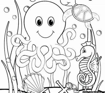 Coloring Sea Pages Ocean Under Animals Drawing