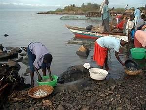 Ville D Eau En 3 Lettres : poisson d 39 eau douce 3 lettres ~ Dailycaller-alerts.com Idées de Décoration