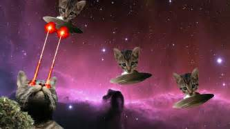 cat laser laser cat by dilbert92 on deviantart