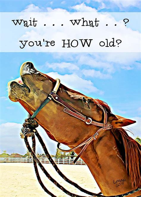 funny birthday card  friend  horse lovers