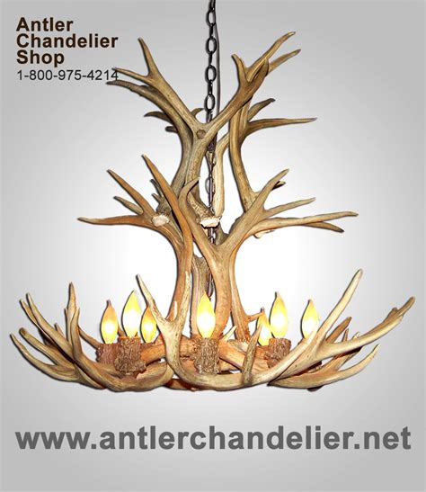 On Sale Today  Antler Chandelier