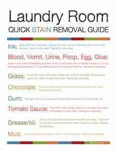 Laundry Room Stain Removal Guide Printable