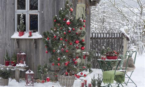 Weihnachtsdeko Garten Ideen by Weihnachtsdeko Last Minute Ideen F 252 R Den Garten Das Haus