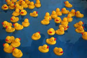 Rubber Duck Pool Game