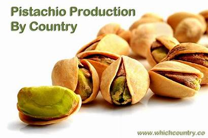 Pistachio Country Whichcountry Production Producing Countries
