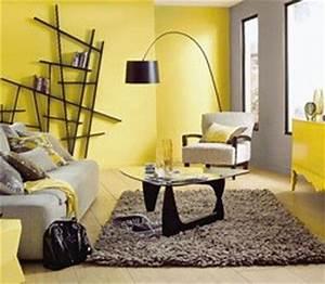 Decoration Mur Interieur Salon : 22 best images about peinture on pinterest industrial ~ Dailycaller-alerts.com Idées de Décoration