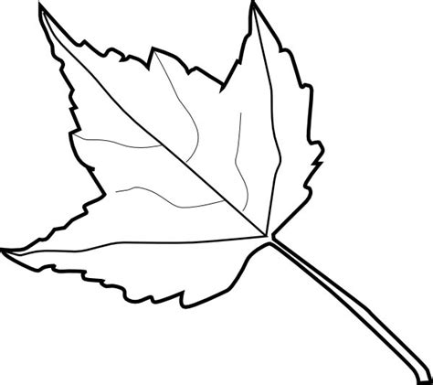 Coloring Outlines by Best Leaf Outline 8631 Clipartion