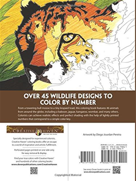 color by number books images