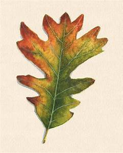Color Chart With Names Digital Transitions 4 Bar Charts Fall Leaf Activity